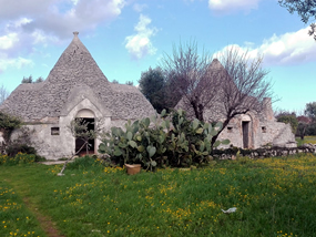 Cycling tours to La Selva - Ostuni, Puglia